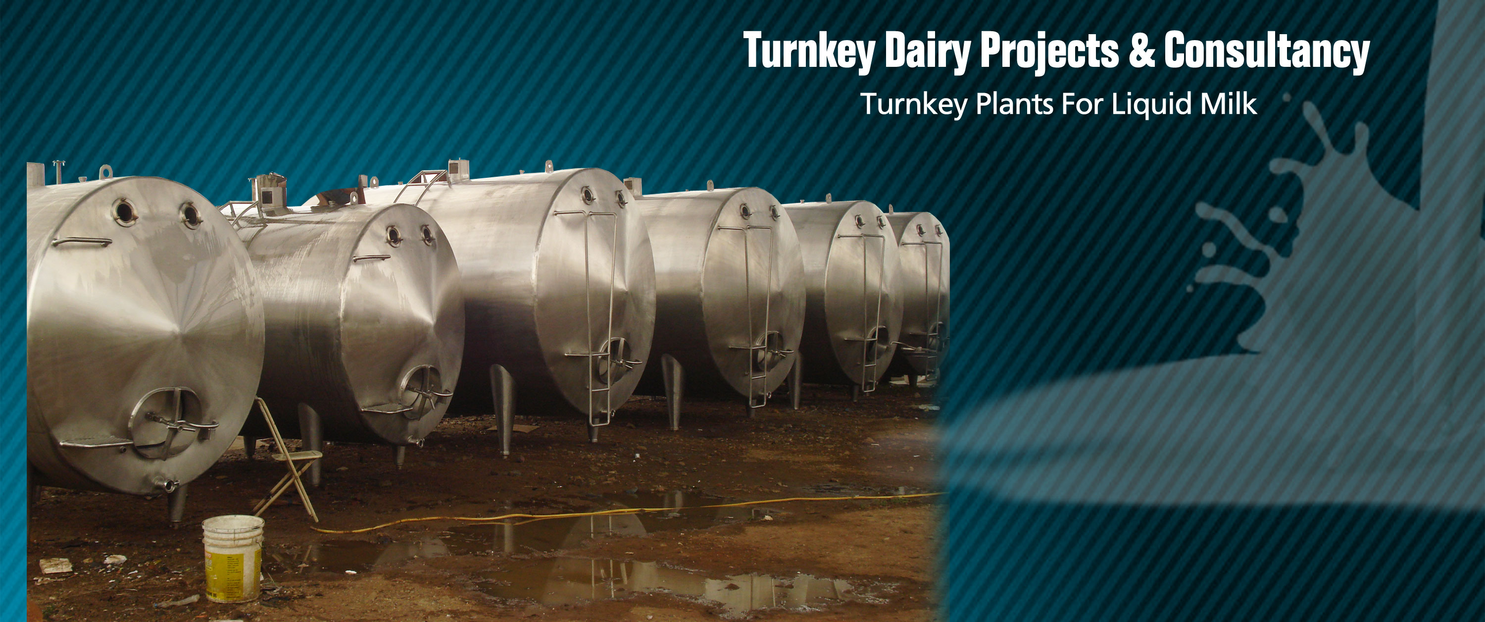 turnkey dairy projects and consultancy